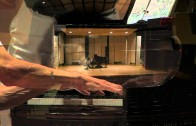 "David Holzman performs Stefan Wolpe – Passacaglia from ""Four Studies for Piano"""